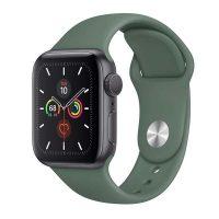 Apple Watch Series 5 Alüminyum kasa